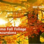 5 Alabama Fall Foliage Excursions