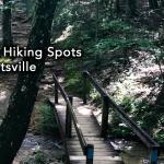 3 Best Hiking Spots in Huntsville